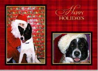 Happy Holidays from Loki