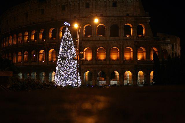 Colosseum Tree