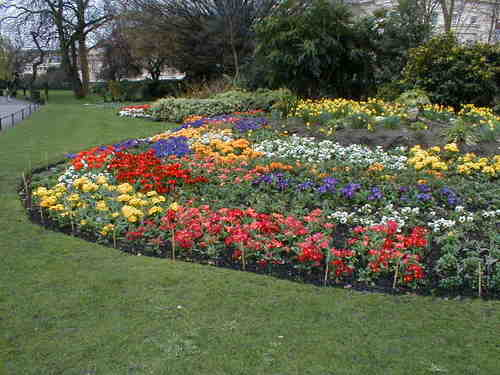 Hyde_park_in_spring