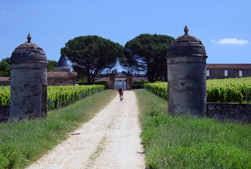 St_emilion_chris_biking_2