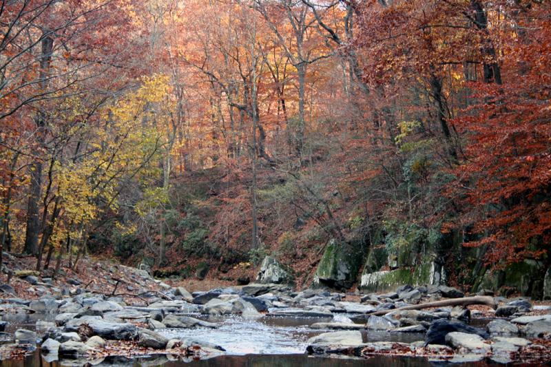 Rock_creek