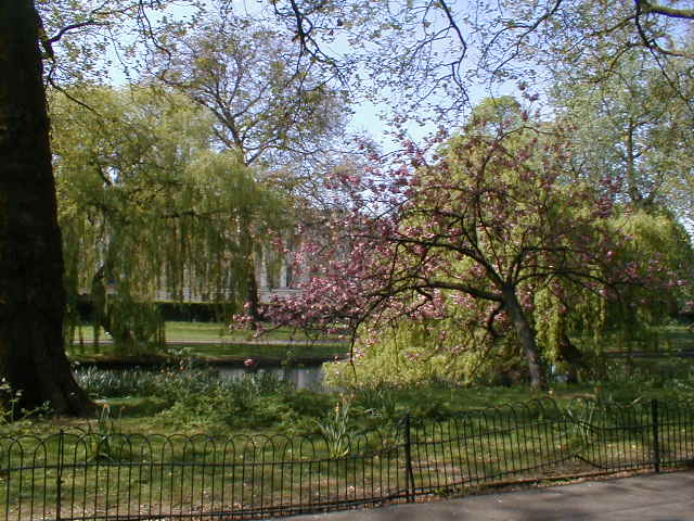 Regents_park_nap_site